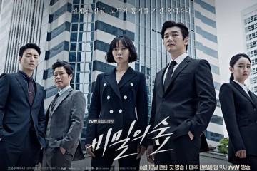 ซีรี่ย์เกาหลี Secret Forest ซับไทย Ep.1-16 (จบ)