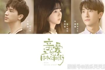 ซีรี่ย์จีน Dear Mayang Street (2020)  ซับไทย Ep.1-9