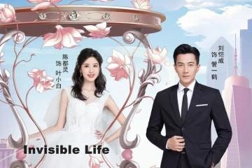 ซีรี่ย์จีน Invisible Life (2020) นี่แหละคือชีวิต ซับไทย Ep.1-7