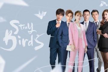 ซีรี่ย์จีน Stray Birds (2021) อลวนคนไอที ซับไทย Ep.1-19